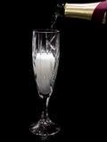 Champanhe de derramamento no fundo preto fotografia de stock royalty free