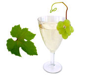 Champanhe de vidro. Fotos de Stock
