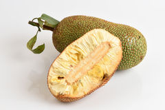 Champedak (ταϊλανδικό όνομα), bankong (Artocarpus ακέραιος αριθμός) Στοκ εικόνα με δικαίωμα ελεύθερης χρήσης