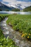 Champferer lake Stock Images