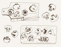 Champiñón Imagenes de archivo