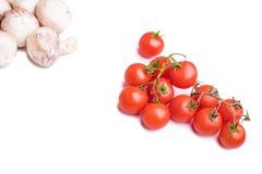 Champiñón y tomates carbonosos Foto de archivo libre de regalías