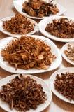 Champiñones secados de diversas variedades Imagen de archivo libre de regalías