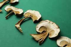 Champiñones secados en un fondo verde Setas narcóticas fotos de archivo
