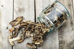 Champiñones secados vertidos de un tarro Fotografía de archivo libre de regalías