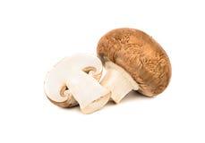 champignon величает королевско Стоковое Изображение RF