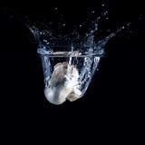 Champignon падая в воду Стоковые Изображения RF