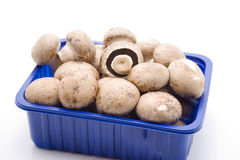 Champignon. Mushrooms in the packaging stock photos