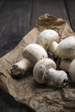 Champignon Royalty Free Stock Photos