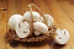 Άσπρα champignon μανιτάρια Στοκ φωτογραφίες με δικαίωμα ελεύθερης χρήσης