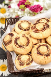 Champignon cookies. Cookies as mushrooms decorated with cocoa, funny dessert for kids Stock Image