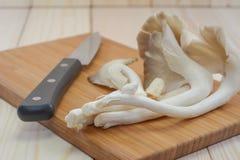Champignon d'huître du Thibet sur la planche à découper en bois avec le couteau, prêt Image stock