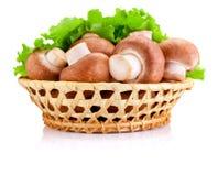 Champignon de champ frais dans le panier et feuilles de salade verte d'isolement Images stock