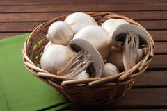 Champignon de champignon de paris Photos stock