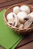 Champignon de champignon de paris Image libre de droits