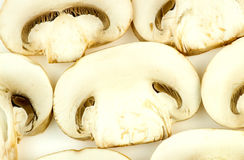 champignon de couche commun Photos stock
