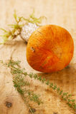 champignon de couche de boletus d'Orange-capuchon sur le panneau en bois de tremble Image libre de droits