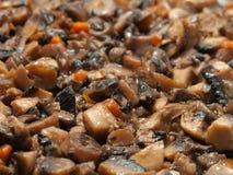 champignon de couche de nourriture Photographie stock