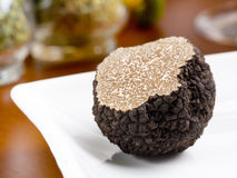 Champignon de couche de truffe Photo stock