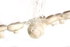 Champignon de couche et eau Images libres de droits