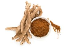 Champignon de Ganoderma Lucidum et poudre secs de reishi dans la cuvette photographie stock