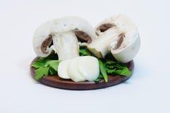 Champignon de paris de champignon de couche Photo stock