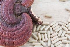 Champignon de zhi de Ling ou capsule de lucidum de Ganoderma Photo libre de droits