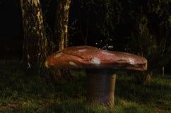Champignon en pierre après crépuscule Photo libre de droits