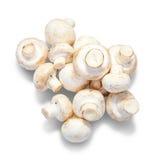 Champignon mushroom Royalty Free Stock Photo