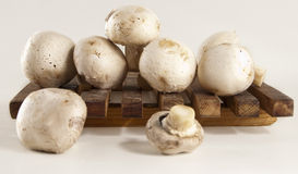 Champignon mushroom. On cutting board over gray Stock Images