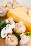 Champignon mushroom with cheese Stock Photography