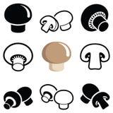 Champignon and mushroom. Collection -  illustration Royalty Free Stock Photos