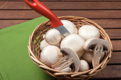 Champignon mushroom. In little basket, vegetables for appetizer and side dish Stock Images