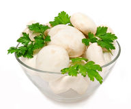 Champignon mushroom with parsley in the bowl Stock Photography