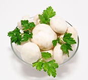 Champignon mushroom with parsley in the bowl Royalty Free Stock Image