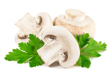 Champignon mushroom with parsley Stock Photos