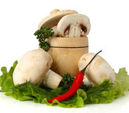 Champignon mushroom with pepper and lettuce in keg Stock Images