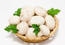 Champignon mushroom white agaricus in the basket Stock Photos
