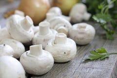 Champignon mushroom Royalty Free Stock Image