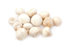 Champignon mushrooms. Fresh mushrooms isolated on a white background Stock Photos
