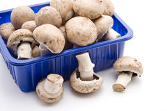 Champignon mushrooms. In the packaging royalty free stock photography