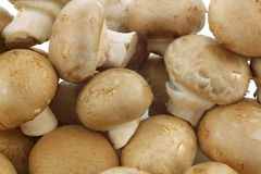 Champignon mushrooms Royalty Free Stock Photos