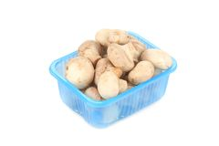 Champignon mushrooms in a blue box. Royalty Free Stock Photos