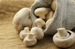 Champignon mushrooms in canvas bag Stock Photography