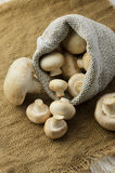 Champignon mushrooms in canvas bag Royalty Free Stock Photos