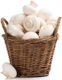 Champignon mushrooms Stock Photos