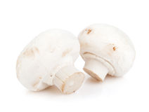 Champignon mushrooms Stock Images