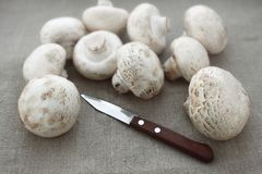Champignon mushrooms and knife. Cooking Royalty Free Stock Photos