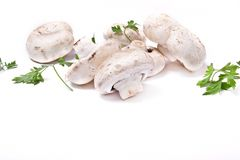 Champignon and parsley Royalty Free Stock Photography