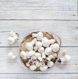 Champignon-Pilze auf einer Tabelle Stockbild